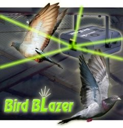 Laser Bird Repellent Device in Action