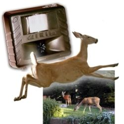 Deer Garden - Deer Gard - Deer Repellent