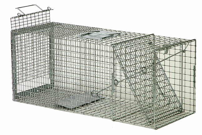 Safeguard Model 52830 Live Cage Trap Rear Release 30 Quot X 11
