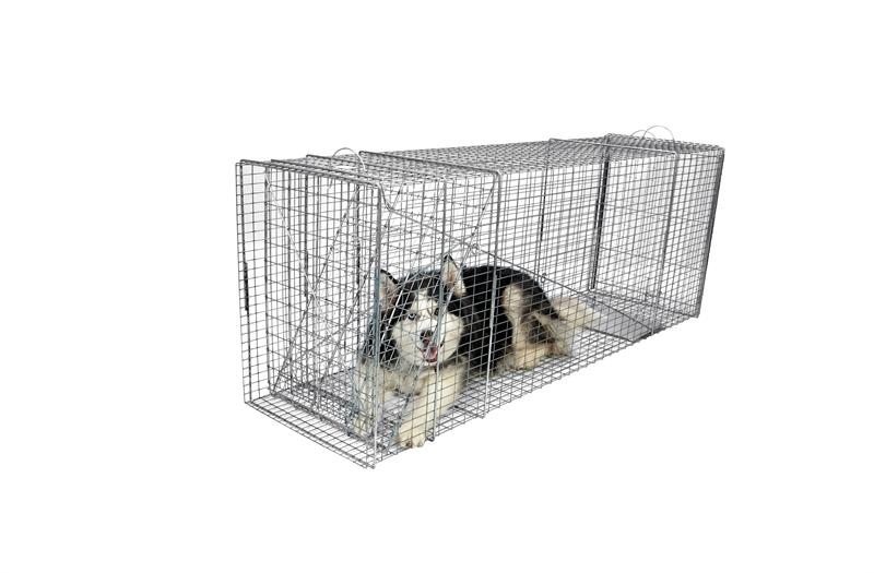 Tomahawk Model 610B Rigid Trap with Easy Release Door Medium Dog Size 60x20x26