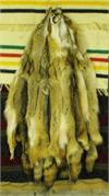 Tanned Fur Pelts