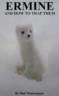 Ermine and how to Trap Them. by Matt Westermayer