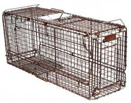 Safeguard Professional Live Traps